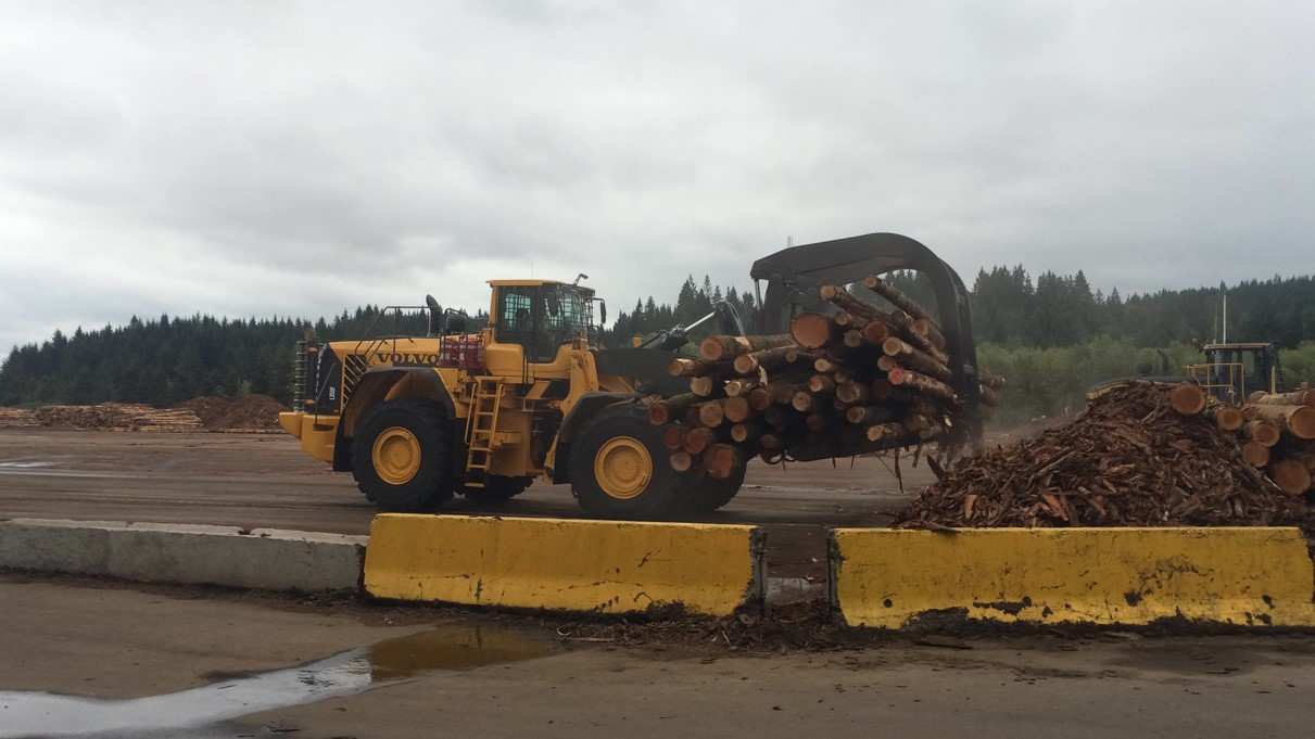 A Volvo L350F with log forks moving fresh cut timber